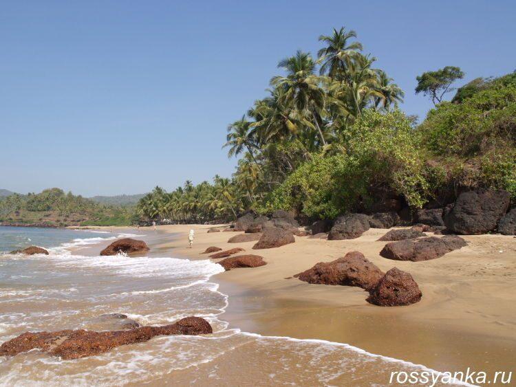 Пляж Кола в Гоа 27