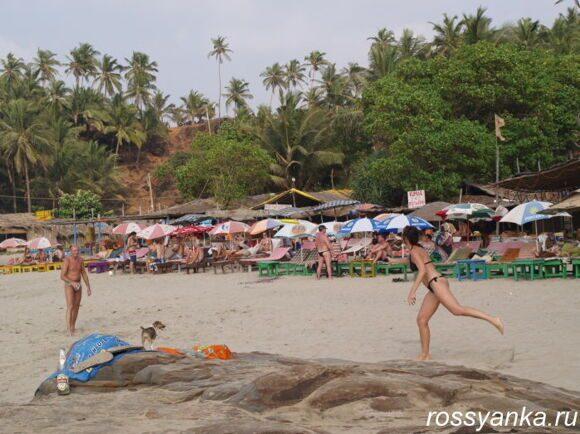 Пляж Вагатор Гоа 11