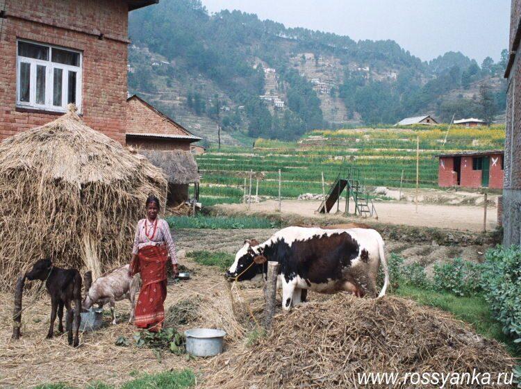 Непал, Катманду 2