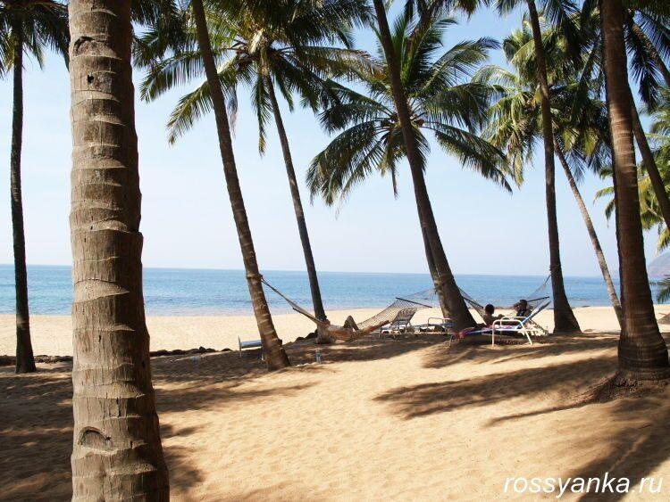 Пляж Кола в Гоа 22