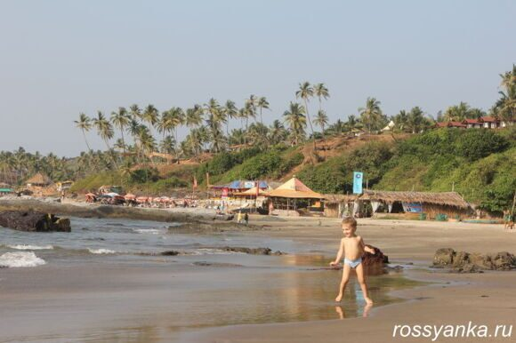 Пляж Вагатор Гоа 73