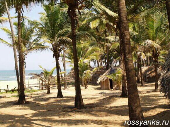 Пляж Парадайз 6