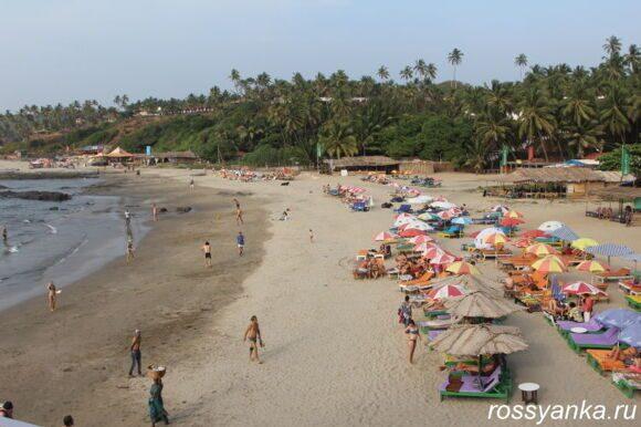 Пляж Вагатор Гоа 71