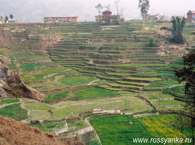 Непал, Катманду 13